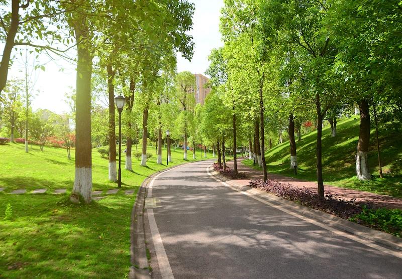 פארקים